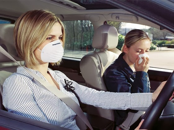 Several Helpful Methods of Eliminating Car Odor