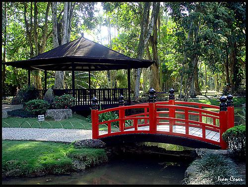 pedras jardim botanico:Terra Média de Claudia: Jardim Botânico do Rio de Janeiro