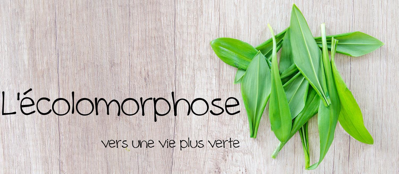 L'écolomorphose