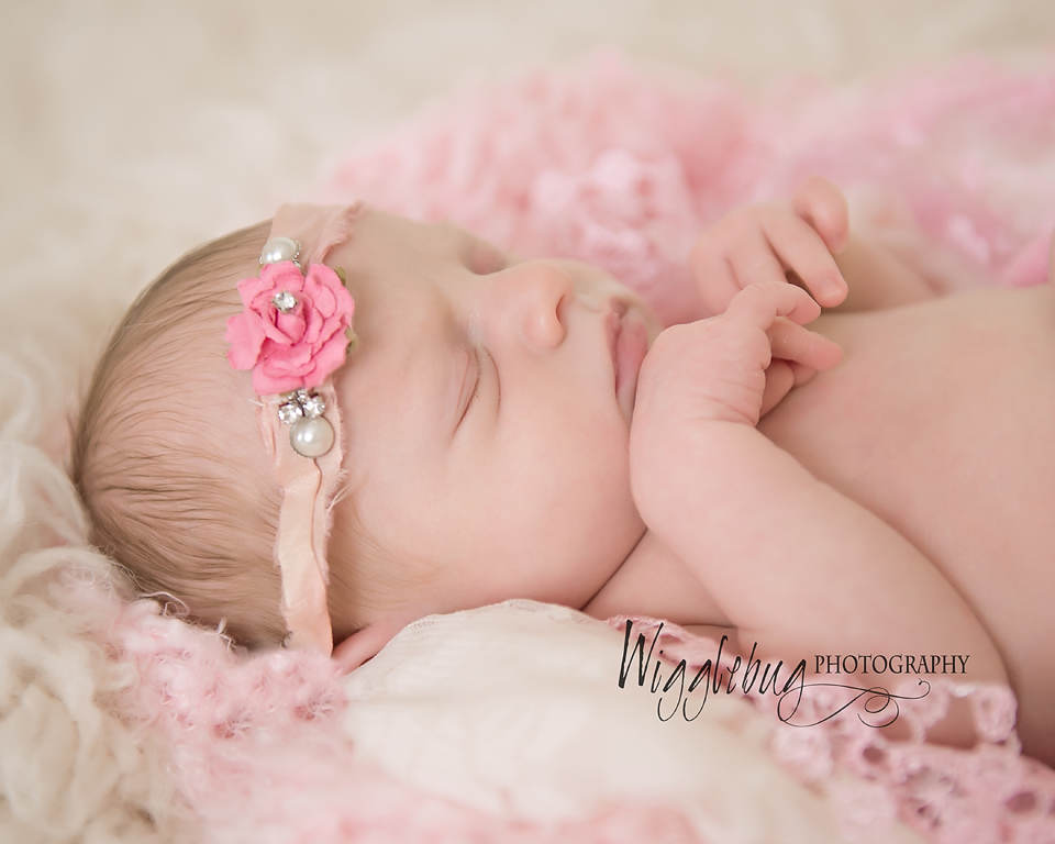 Northern IL Newborn Session : Baby girl Newborn session in professional studio