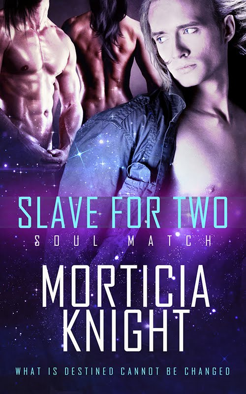Out Now! ~ Slave For Two (Soul Match 1)