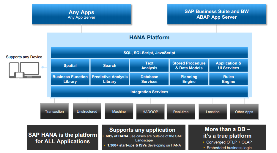 HANA ROADMAP DIAGRAM BIG PICTURE