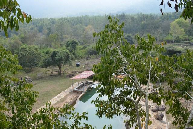 Vistas de la jungla