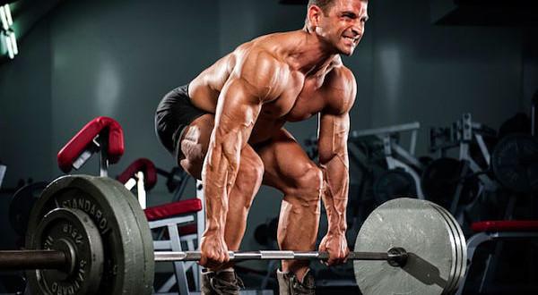 「bodybuilding training」的圖片搜尋結果