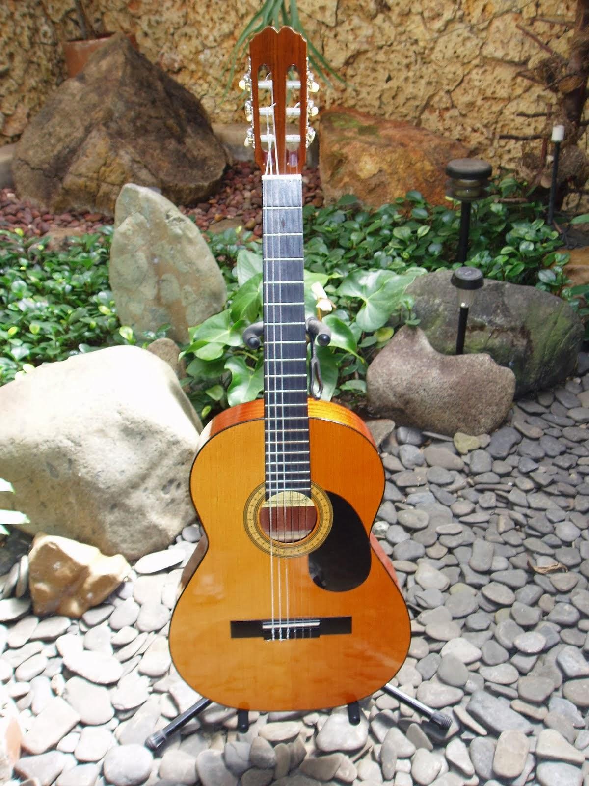 Mi guitarra electroacústica española