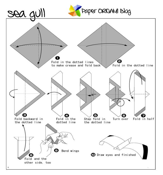 Download Photos HERE Sea Gull Origami