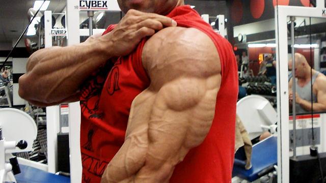 Como desarrollar unos brazos enormes. ~ Gana masa muscular facil!