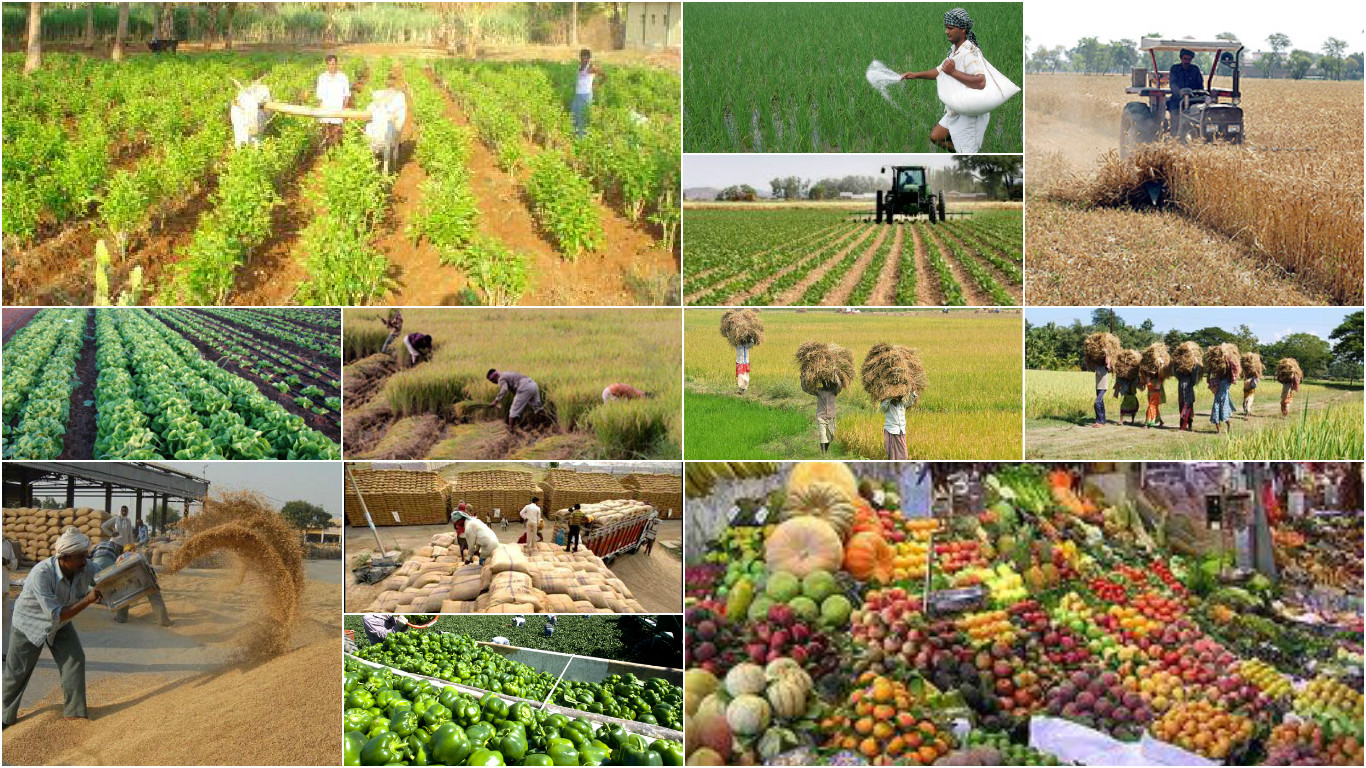 agriculture industry overview Our industry 2016 our industry 2016 food feed fuel 3 2 1 0 +12-16% cagr 1980 1990 2000 2015 2027 we need to grow more with less our global challenge agricultural.
