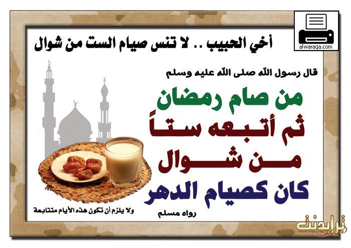 ���� ���� ���� ���� q-ballahmar4030c914db.jpg