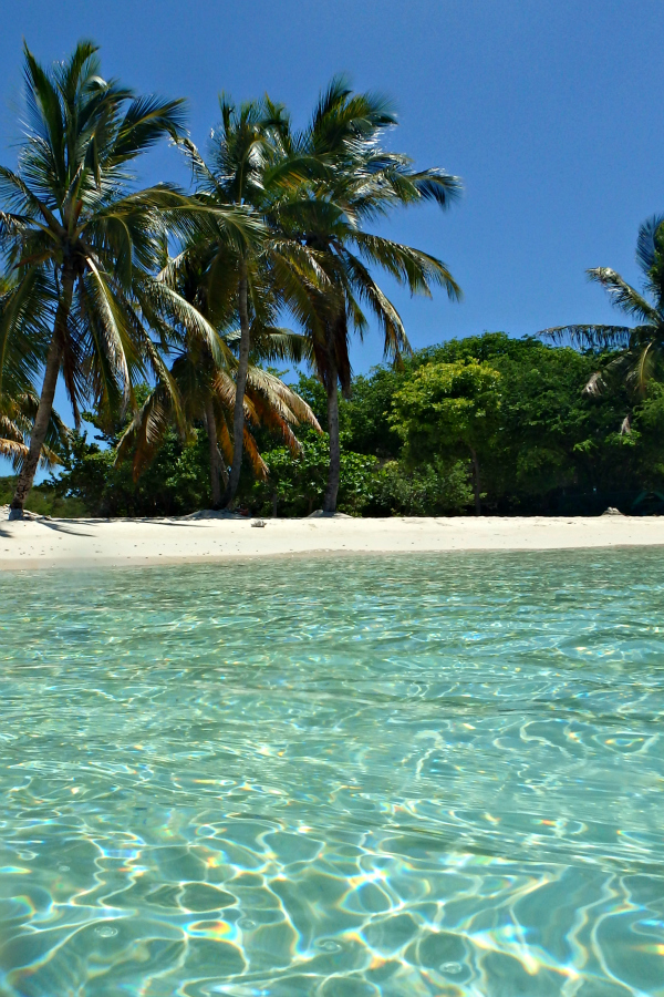 Caribbean paradise in the Tobago Cays in St Vincent and the Grenadines