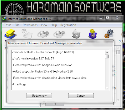 Download IDM 6.17 Build 7 Final Full + Patch 100% Working
