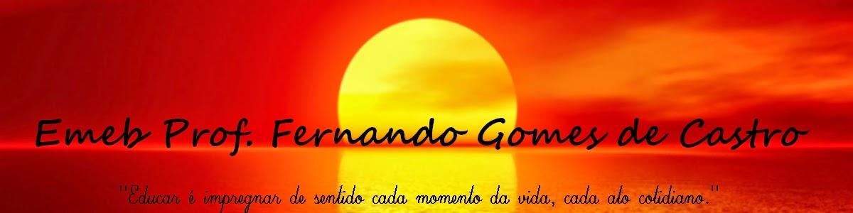 Emeb Fernando Gomes de Castro