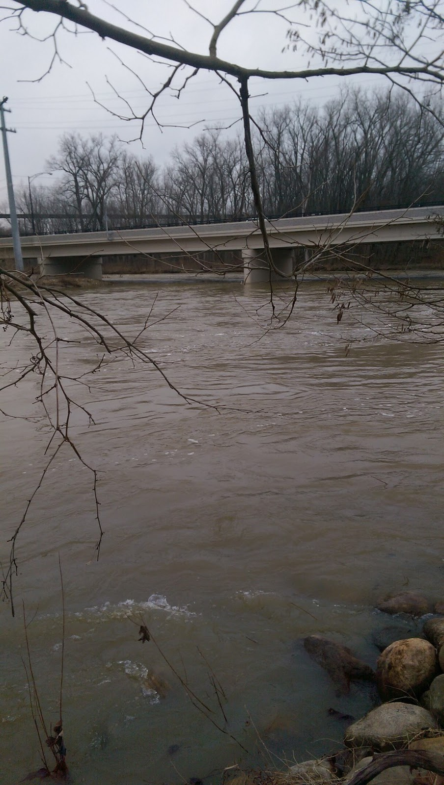 Lake metroparks fishing report grand river is high and muddy for Grand river fishing