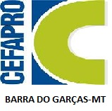 CEFAPRO DE BARRA DO GARÇAS -MT