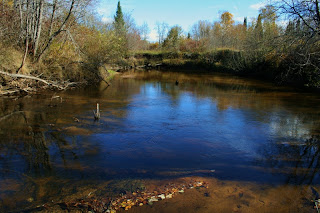 Carp  River, Trout Lake, MI
