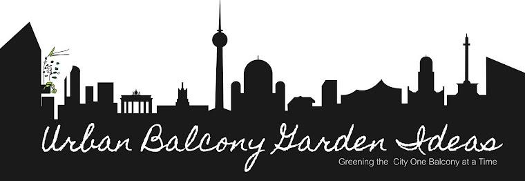 Urban Balcony Garden Ideas