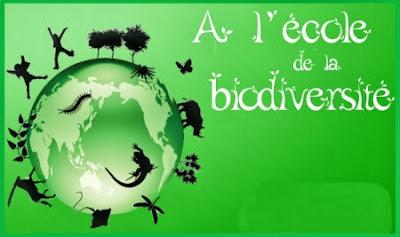 Rencontres ecologiques die