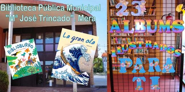 http://www.pinterest.com/bibloleiros/23-%C3%A1lbums-ilustrados-para-ti-na-biblioteca-de-mera/