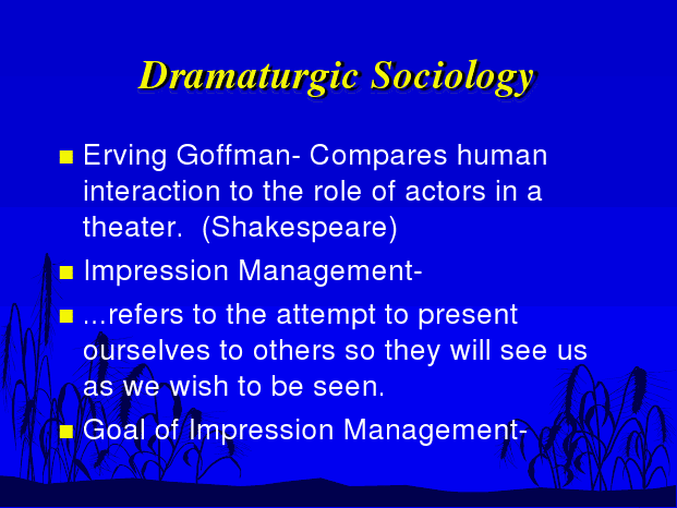 Goffman Impression Management Research Paper Academic Writing Service