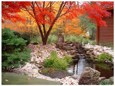 Japanese garden designcreate ideas water garden design for Japanese water garden design ideas