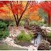 Japanesen Garden