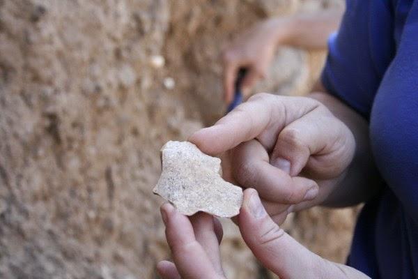 alat batu manusia purba
