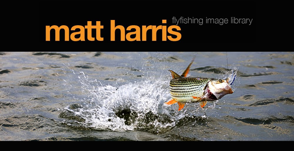 Matt Harris Flyfishing