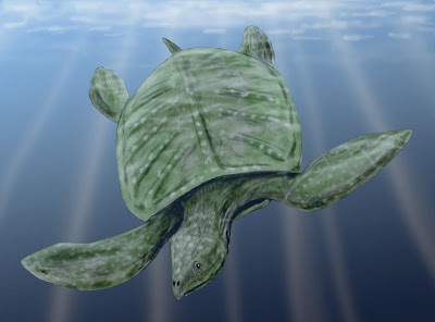 tortuga gigante prehistorica Archelon