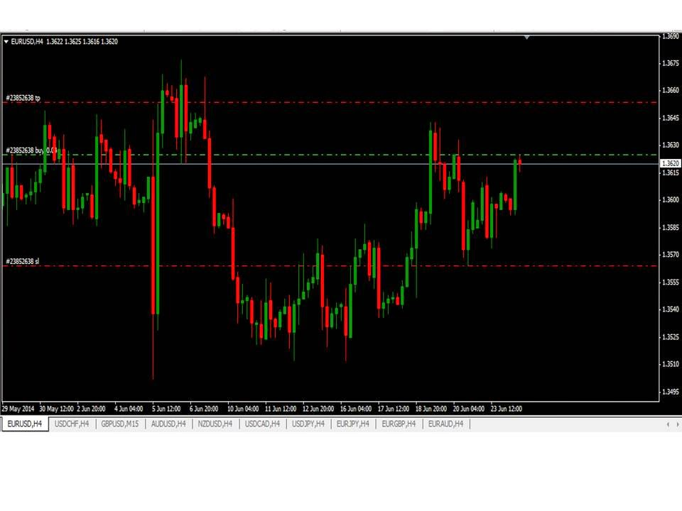 Forex trading 24