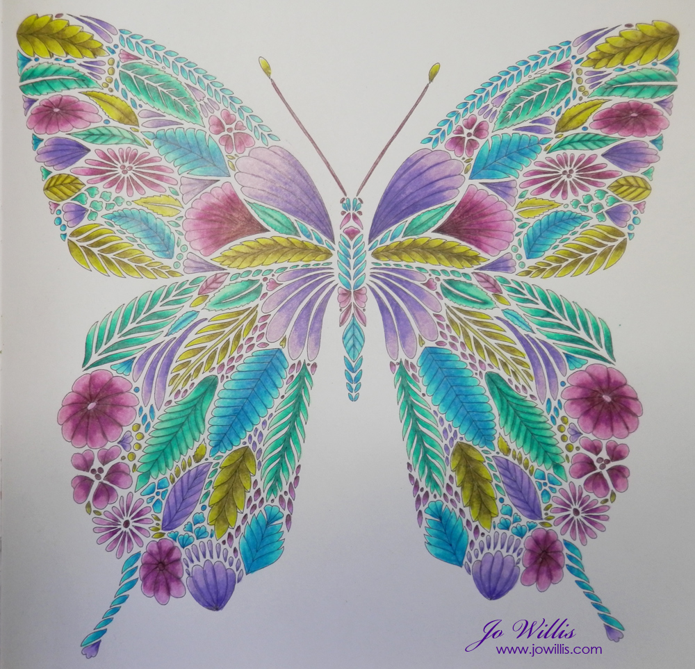 Here I Go Again A Millie Marotta Butterfly