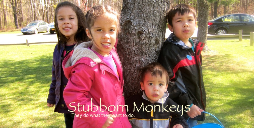 Stubborn Monkeys