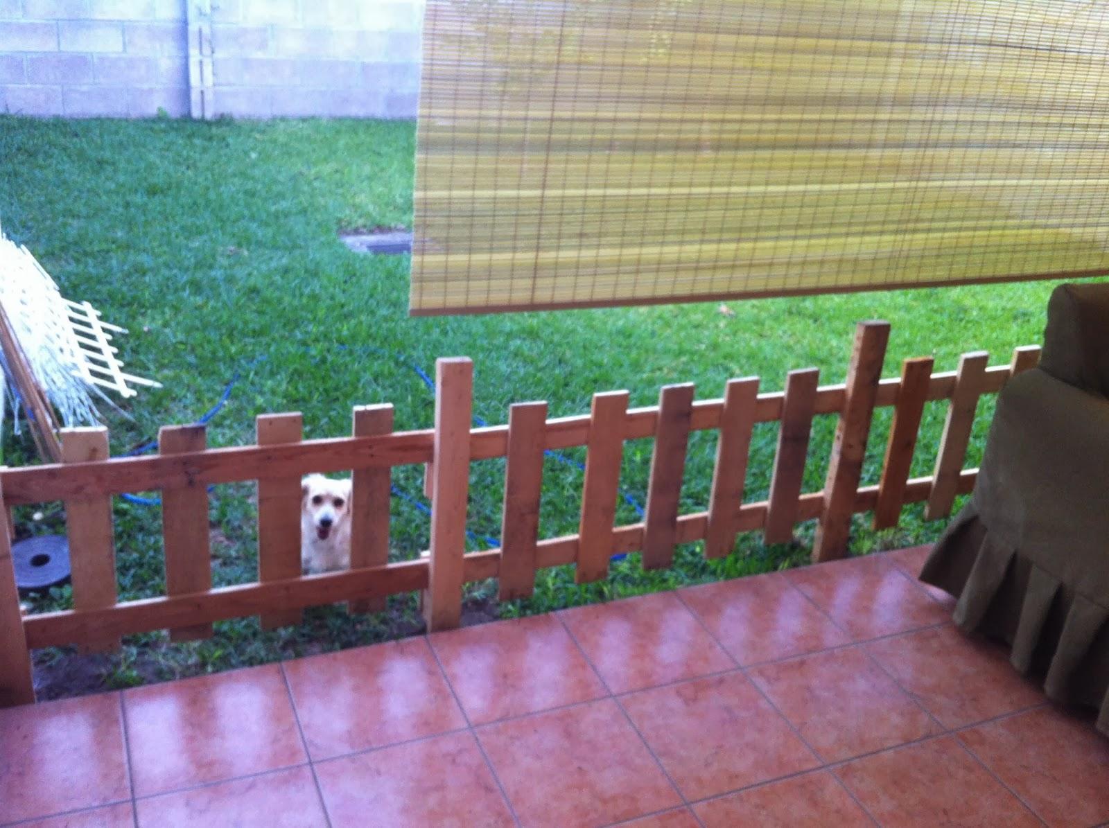Cerca para jardin hecha de tablas de tarimas - Cercas de jardin ...