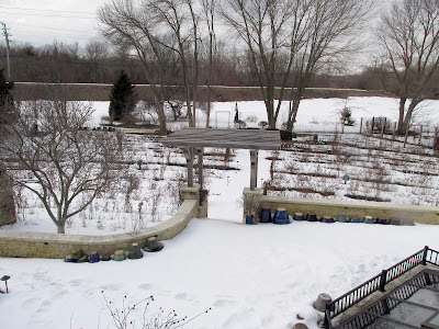 Radler's snow-covered back yard