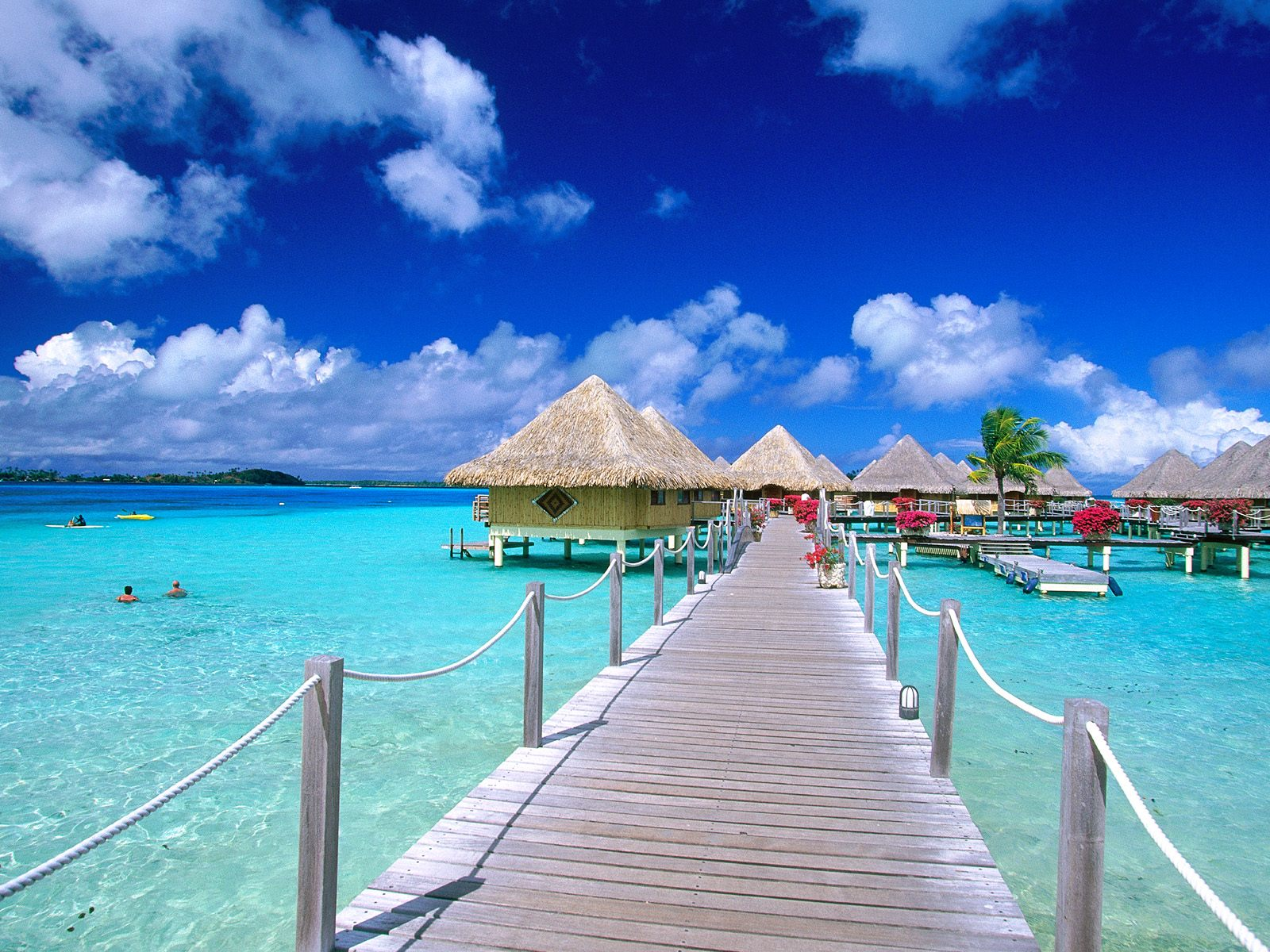 walkway to paradise french polynesia wallpapers - Wallpaper walkway to paradise french polynesia