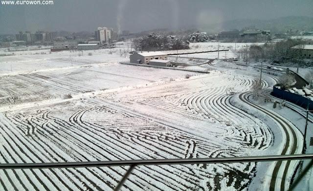 Paisaje nevado visto desde el tren KTX de Corea del Sur