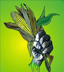 Escuela Agroecològica de Guambra