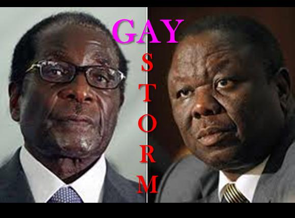 gay zimbabwe