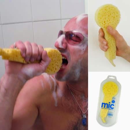 11-sponge-stylish-with-microphone-form