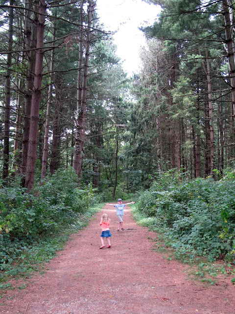 Walking Trail at The Wilderness Center