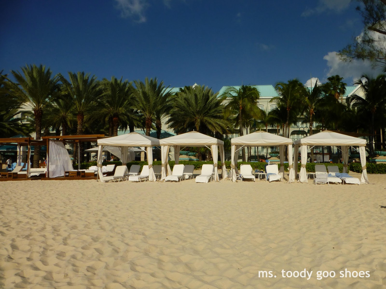 ms-toody-goo-shoes-restin-at-westin-grand-cayman1.jpg