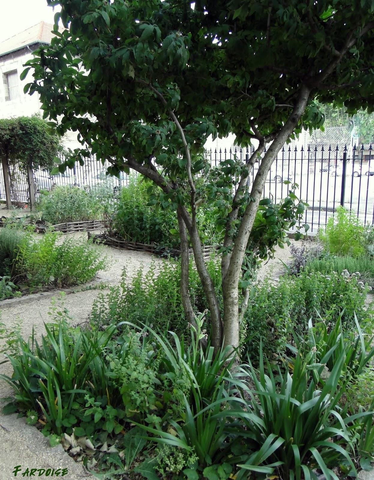 Les feuillets de fardoise le jardin m di val de valence for Le jardin imparfait