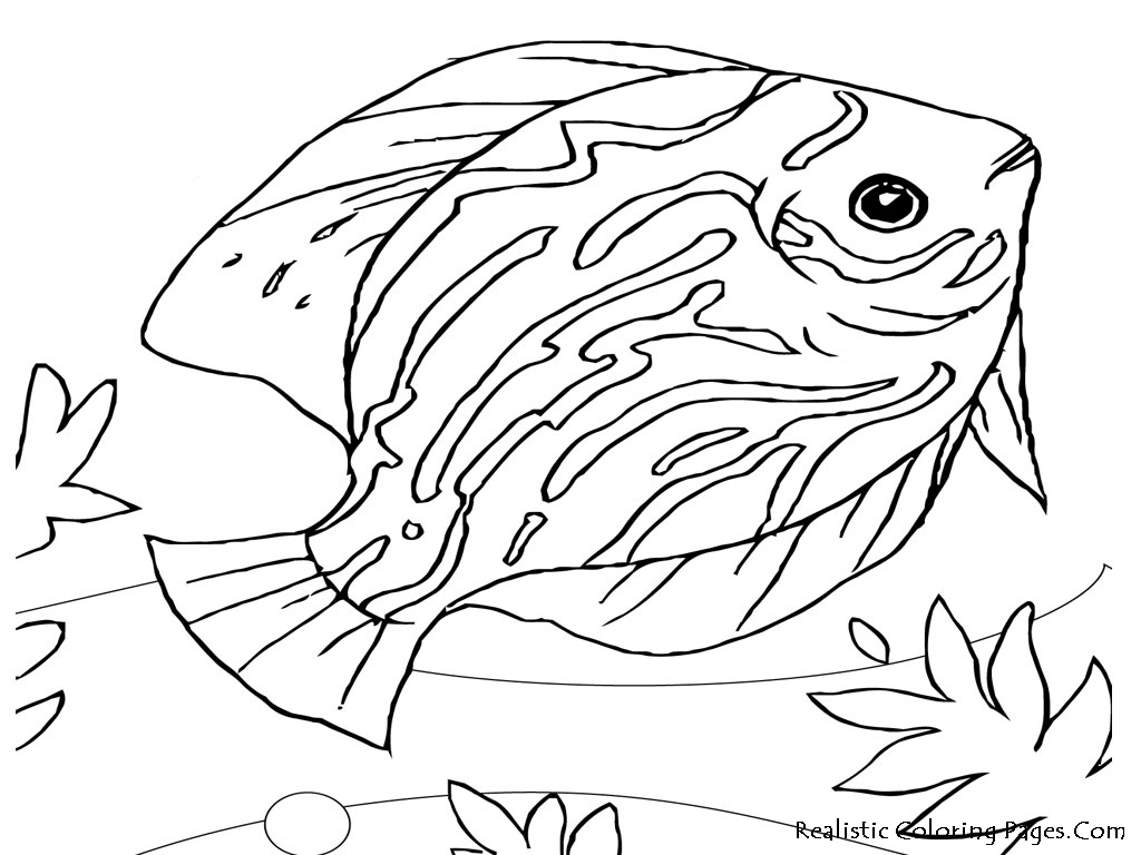 dog coloring pages realistic fish - photo#16
