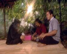 Tumbal Pesugihan Gunung Kawi
