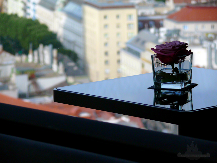 Foto-Workshop Discover Sofitel Vienna Stephansdom Rose mit Ausblick