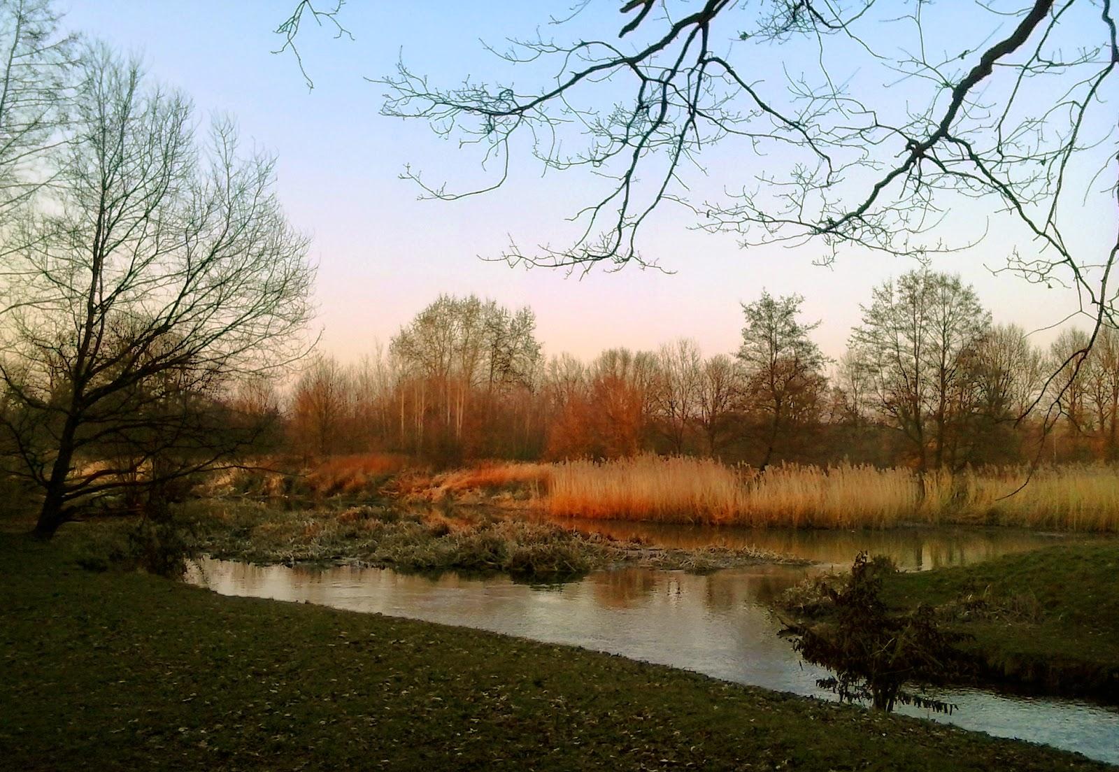 Wrocław Park Wschodni Bieganie Ścieżka biegowa