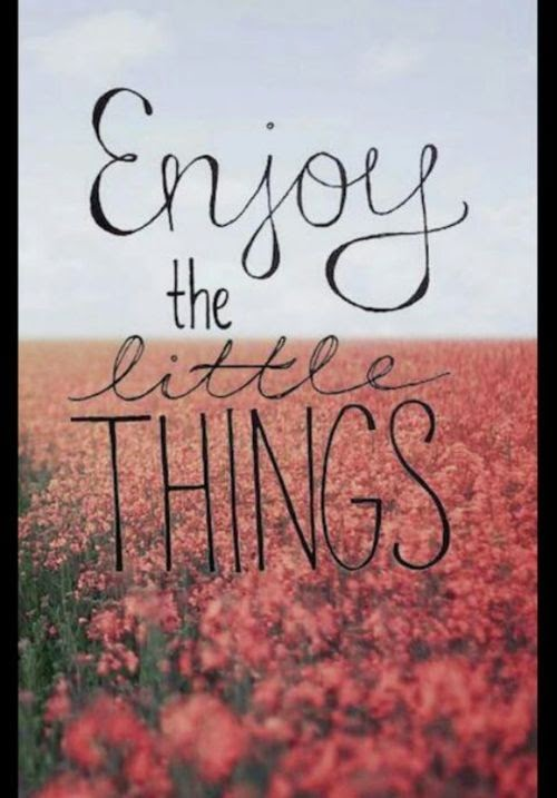 """Enjoy the little things."" ~ Unknown"