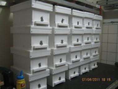 Anaarı çiftleştirme kutuları