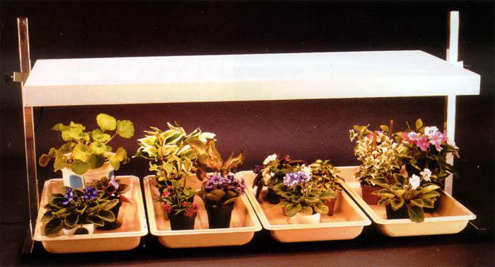 Iluminacion led luz artificial para plantas - Iluminacion para plantas ...