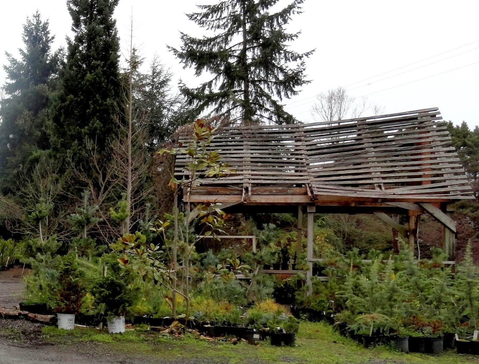 danger garden: Visiting Grey Greer Gardens...