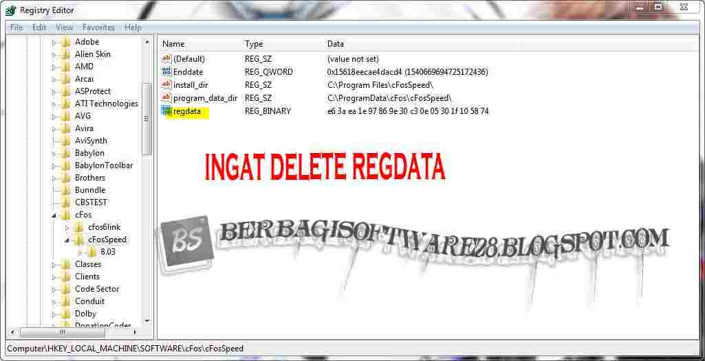 how to delete a trial registry key